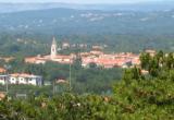 Prosecco (immagine tratta da Wikipedia, che ringraziamo)